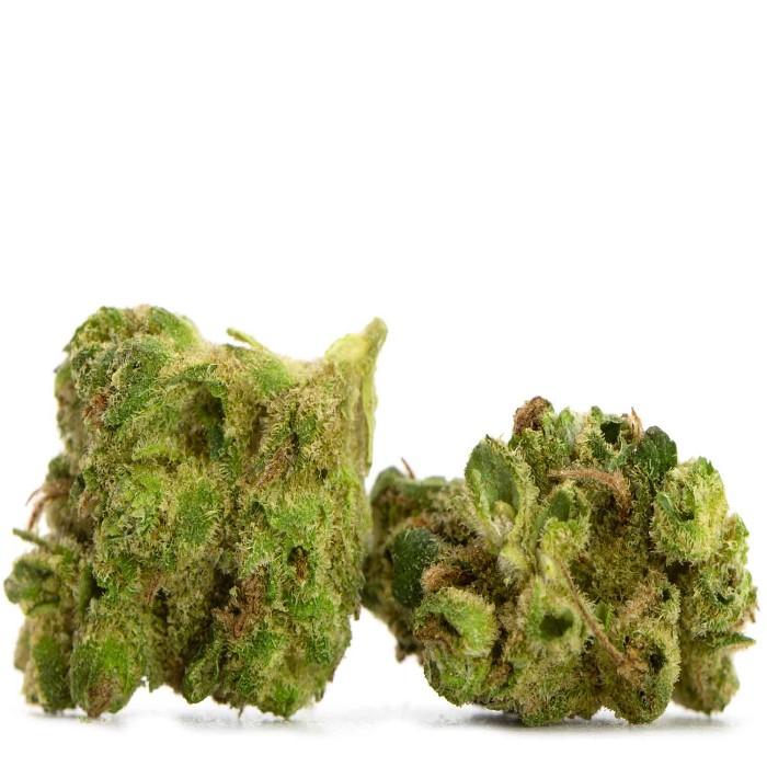 Small Bud 1/2 Oz | Sour Diesel