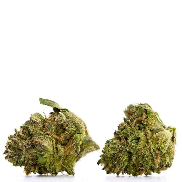 Small Bud 1/2 Oz | Indica Blend